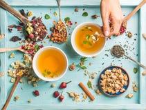 Dwa filiżanki zdrowa ziołowa herbata z mennicą cynamon, rumianków kwiaty w łyżkach i mężczyzna ręki mienia łyżka, suszący wzrasta Obraz Royalty Free