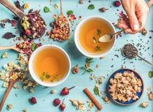 Dwa filiżanki zdrowa ziołowa herbata z mennicą cynamon, rumianków kwiaty w łyżkach i mężczyzna ręki mienia łyżka, suszący wzrasta Zdjęcie Stock