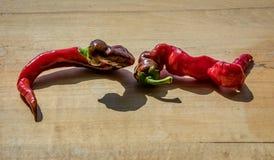 Dwa fryzują Cayenne pieprzu na drewnianym bloku z krótkim cieniem obok siebie fotografia stock