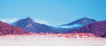 Dwa góry, przerastającej z drzewami, zakrywającymi z mgłą obrazy royalty free