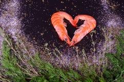 Dwa garneli tworzy serce z rozmarynami, solą i pieprzem, Obrazy Stock