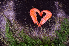 Dwa garneli tworzy serce z rozmarynami, solą i pieprzem, Fotografia Stock
