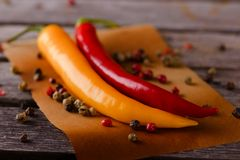 Dwa gorącego chili pieprzu z pieprzowymi ziarnami Obraz Stock