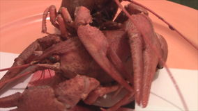 Dwa gotowany homar na stole w ruchu zbiory