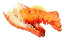 Dwa gotującego homara ogonu Zdjęcia Stock