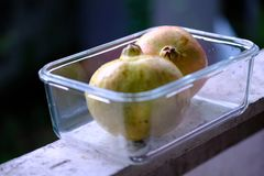 Dwa granatowów owoc różowy i jaskrawy kolor żółty zdjęcia royalty free