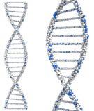 Dwa helix molekuł zamknięty up Dna 3d odpłacają się dalej Zdjęcie Royalty Free