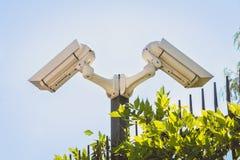 Dwa inwigilaci kamery monitorują luksusową własność Zdjęcie Royalty Free