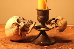 Dwa istot ludzkich czaszka Obrazy Stock