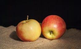 Dwa jabłka na ciemnym tle z kroplami rosa na powierzchni z burlap zdjęcie royalty free