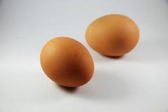 dwa jajka Obraz Royalty Free