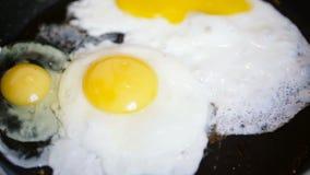 Dwa jajka smażącego w niecce dodawali one inny zbiory wideo