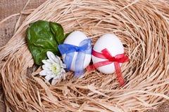 Dwa jajka, widok od wierzchołka Zdjęcia Royalty Free