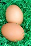 Dwa jajka z Easter dekoracją Zdjęcia Royalty Free