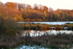 Dwa jeziora w zima krajobrazie Fotografia Royalty Free