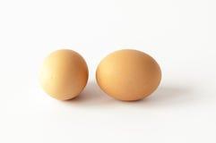 Dwa karmazynki jajka odizolowywającego na bielu Obrazy Stock