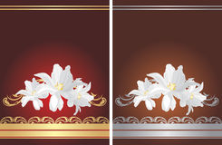 Dwa kartka z pozdrowieniami z białymi kwiatami Obrazy Royalty Free