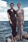 Dwa kobiety damy ubrań odzieży jedwabiu piękna seksowna perfect suknia Zdjęcia Royalty Free