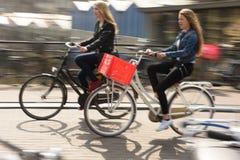 Dwa kobiety Jadą ich rowery pracować w Amsterdam, holandie Zdjęcie Stock