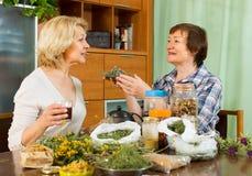 Dwa kobiety warzy ziołowej herbaty Fotografia Stock