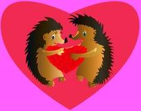 Dwa kochanka jeża Zdjęcie Royalty Free