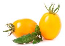 Dwa kolorów żółtych pomidor z liściem na białym tle Obraz Royalty Free