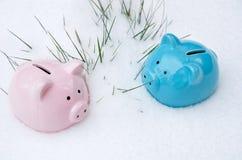 Dwa kolorowego prosiątko banka w śniegu Zimy czas, oszczędzania i depozyty, obrazy royalty free