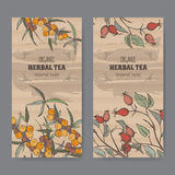 Dwa koloru rocznika etykietki dla psa różanego i buckthorn herbaty ilustracja wektor