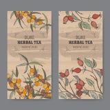 Dwa koloru rocznika etykietki dla psa różanego i buckthorn herbaty Obrazy Stock
