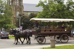 Dwa koni fracht z turystami w Charlottetown w Kanada Obrazy Stock
