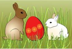 Dwa królika z barwionym jajkiem Zdjęcia Stock