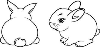 dwa króliki konturowy rysunek Zdjęcie Stock