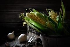 Dwa kukurydzanego cobs w niecce na nieociosanym drewnianym tle obok cebuli, sól życie ciągle kukurydziany Zdjęcie Stock
