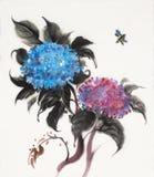 Dwa kwiat hortensi Zdjęcia Royalty Free
