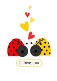 Dwa ladybird w miłości Obrazy Royalty Free