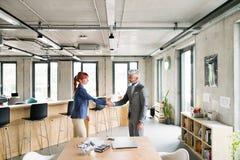 Dwa ludzie biznesu w biurowych chwianie rękach Obraz Stock