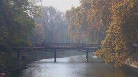 Dwa ludzie chodzą na drewnianym moście przez rzekę w parku przy pięknym jesień dniem zbiory wideo