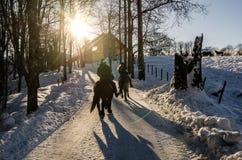 Dwa ludzie jeździeckiego konia w grupowy niedalekim gospodarstwo rolne w Oslo Norwegia Niski słońce w zimie obrazy royalty free