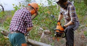 Dwa lumberjacks z piły łańcuchowej rozcięcie spadać drzewem 4k zdjęcie wideo