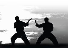 Dwa mężczyzna demonstrują karate Obraz Royalty Free