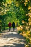 Dwa mężczyzna waling wzdłuż alei z świeżą wiosną opuszczają jarzyć się i obraz stock