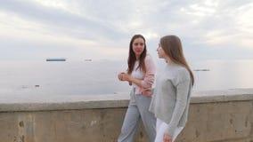 Dwa młoda kobieta przyjaciela chodzi na quay zdjęcie wideo