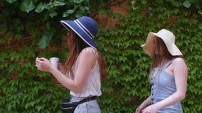 Dwa młoda kobieta przyjaciela chodzi w panamas na ulicach wzdłuż obfitolistnej ściany - jeden one pije napój od filiżanki zdjęcie wideo