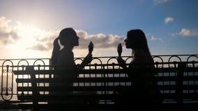 Dwa młodej kobiety siedzi na quay i je lody zdjęcie wideo