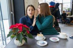 Dwa młodej pięknej kobiety skrycie siedzi przy stołem w sklepie z kawą, dziewczyny szepczą sekret w ich ucho obrazy royalty free
