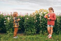 Dwa małego dziecka bawić się wpólnie outside w kwiatu ogródzie Zdjęcia Stock