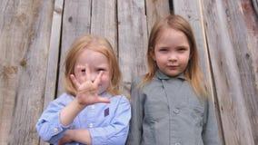 Dwa małej ślicznej dziewczyny z blondynu pozować zbiory