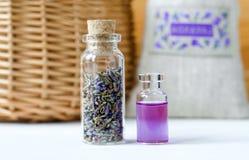 Dwa małej butelki z suchymi lawendowymi pączkami i aromata oleju pachnidłem, tincture, ekstrakt, infuzja Aromatherapy składniki zdjęcia royalty free