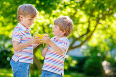 Dwa małej preschool dzieciaka chłopiec je arbuza w lecie Zdjęcie Stock