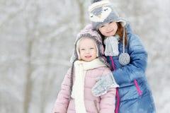 Dwa małych siostr zimy śmieszny uroczy park zdjęcie stock